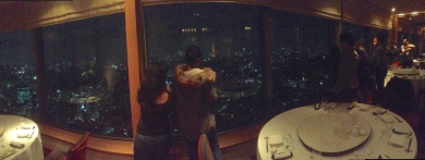 Awesome view of Tokyo at Yebisu Garden Place!