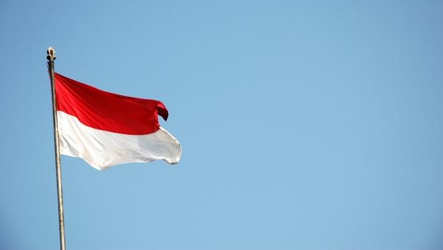 Economic, Cultural, and Ethnic Diversity in EmergingIndonesia