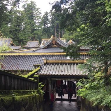 Nikko overhead
